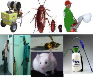 شركة رش المبيدات بالمدينة المنورة
